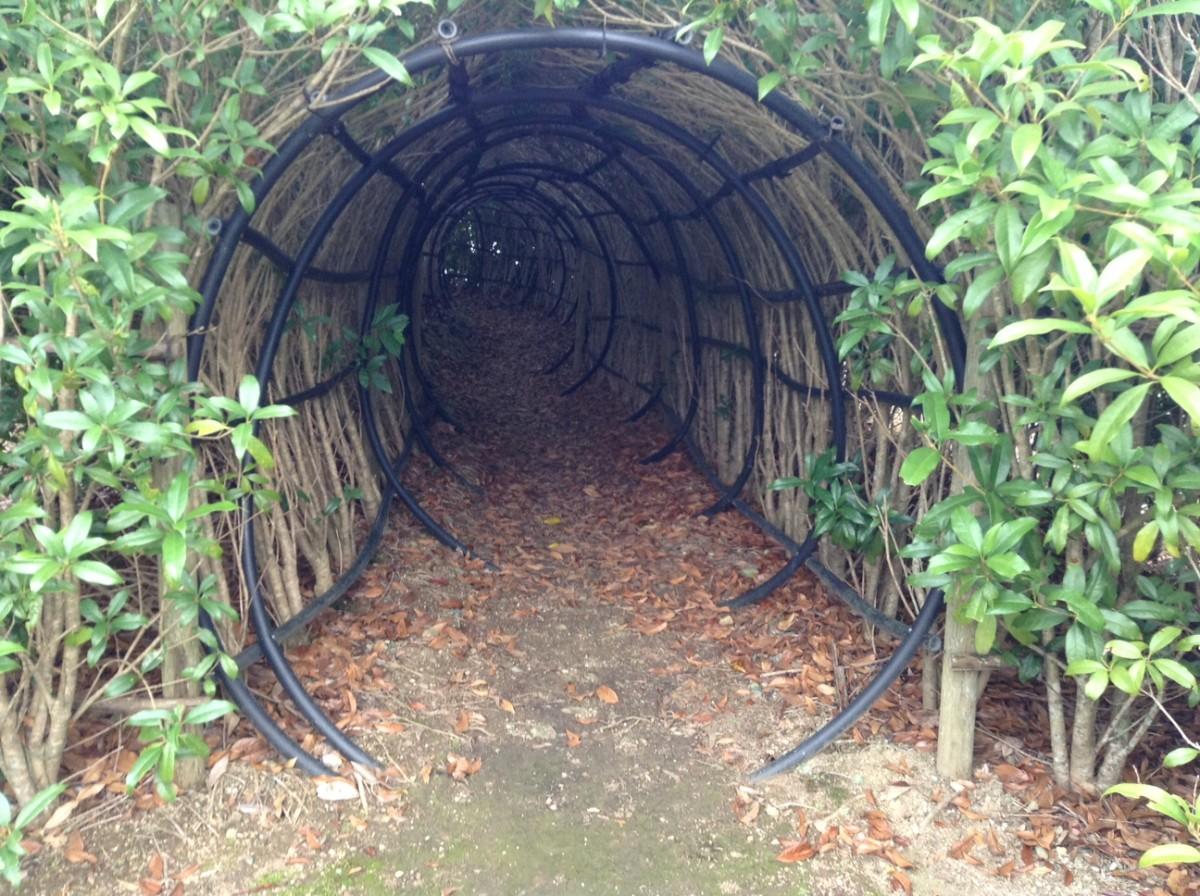 トトロのトンネル
